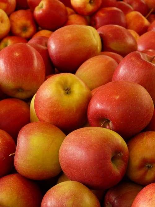 Apple Fruit Vitamins Fresh Healthy Ripe Red