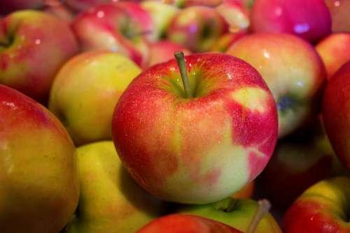 Apples Jonagold Healthy Food Vitamins Ripe Many