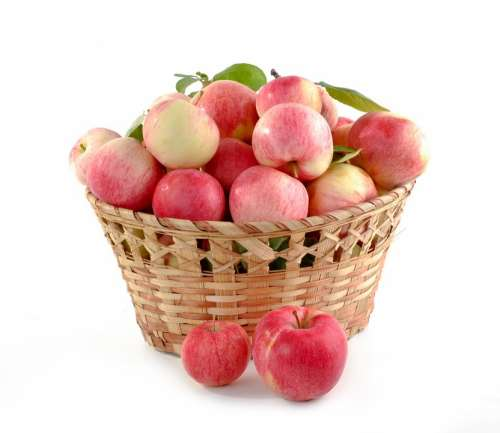 Apples Basket Full Set Crop Food Fruit Autumn