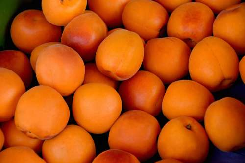 Apricots Fruits Delicious Stone Fruit Fruit
