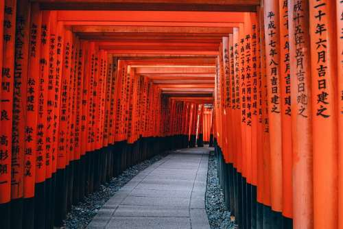 Architecture Japan Kyoto Path Shinto Temple Red