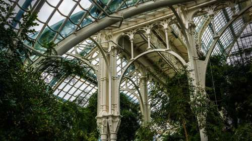 Architecture Steel Glass Interior View Palm House