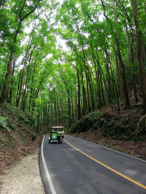 Asia Philippines Bohol Made Forrest Motorcycle Taxi