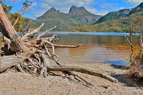 Australia Tasmania Nature Water Landscape Summer
