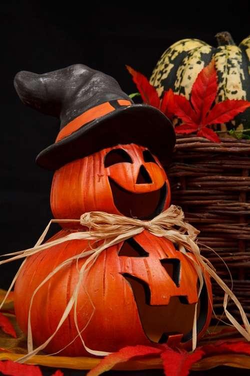 Autumn Decor Decoration Decorative Face Fall