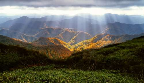 Autumn Mountains October Shirakami-Sanchi Forest