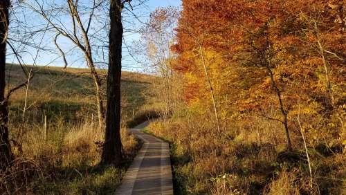 Autumn Fall Boardwalk Leaves Ohio Evening