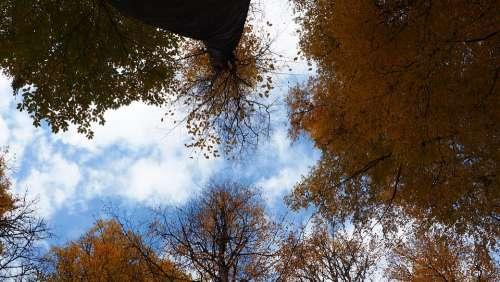 Autumn Peace Nature Landscape Lake Blue Natural