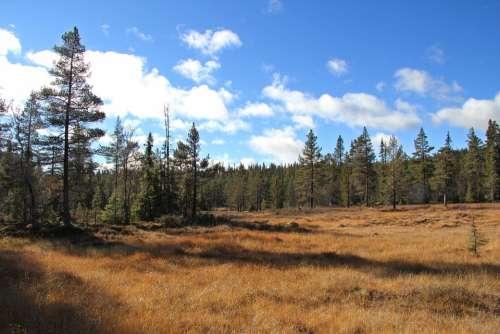 Autumn Telemark Norway Tindefjell Norway