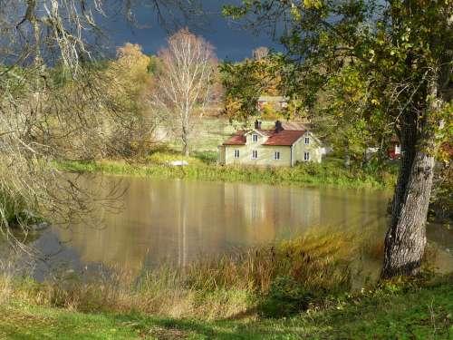 Autumn Tree Himmel House Water Lake Mirroring