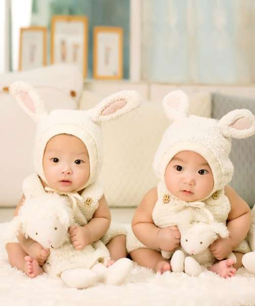 Baby Twins Brother Sister Siblings Cute Bunny