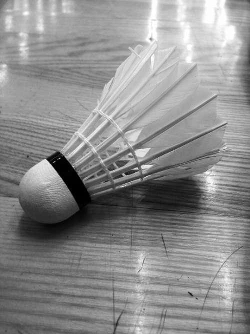 Badminton Ball Shutlecock Sport