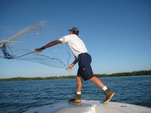 Bait Key West Flats Fishing Fishing Catch Man