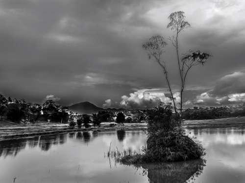 Bali Paddies Island Sky