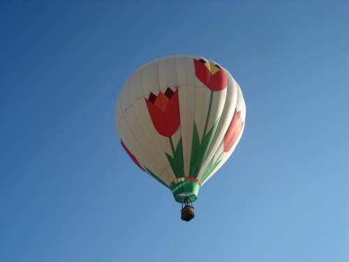 Balloon Sky Tulips