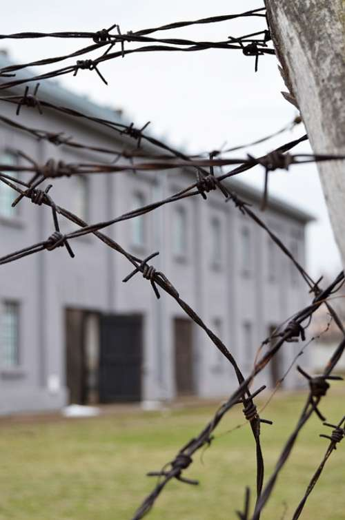 Barbed Wire Concentration Camp Prison History
