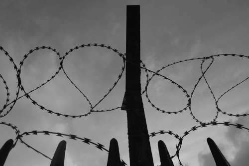 Barbed Wire Fence Secretion