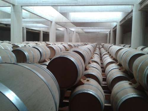 Barrels Wine Breeding