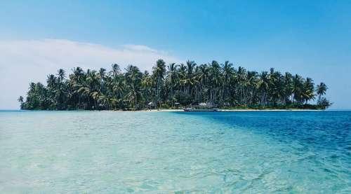 Beach Island Palm Trees Nature Ocean Paradise Sea