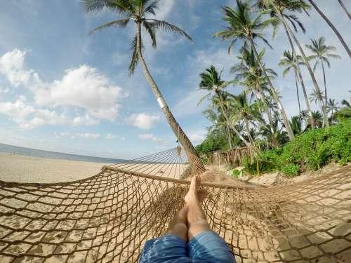 Beach Hammock Blue Sky Clouds Coconut Trees Exotic