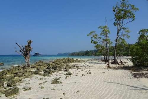 Beach Sea Elephant Beach Havelock Islands Andamans