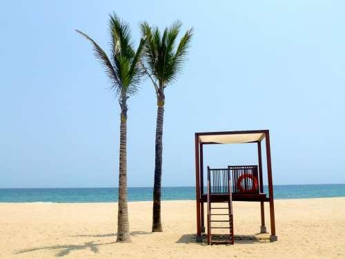 Beach Holidays Palm Trees Sea Water Holiday