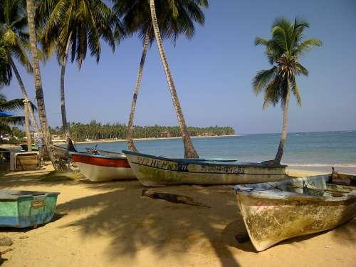 Beach Island Nature Boats