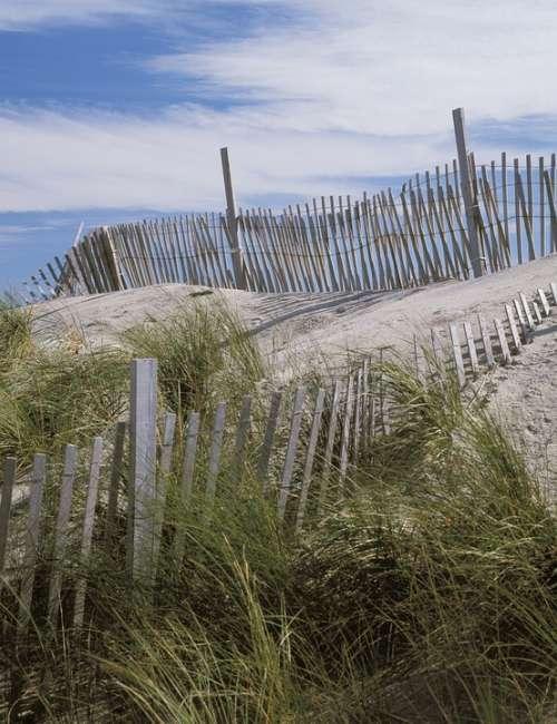 Beach Scene Dunes Fence Grass Summer Sand Nature