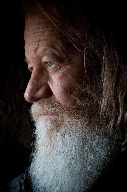 Beard Close-Up Elderly Face Hair Male Man