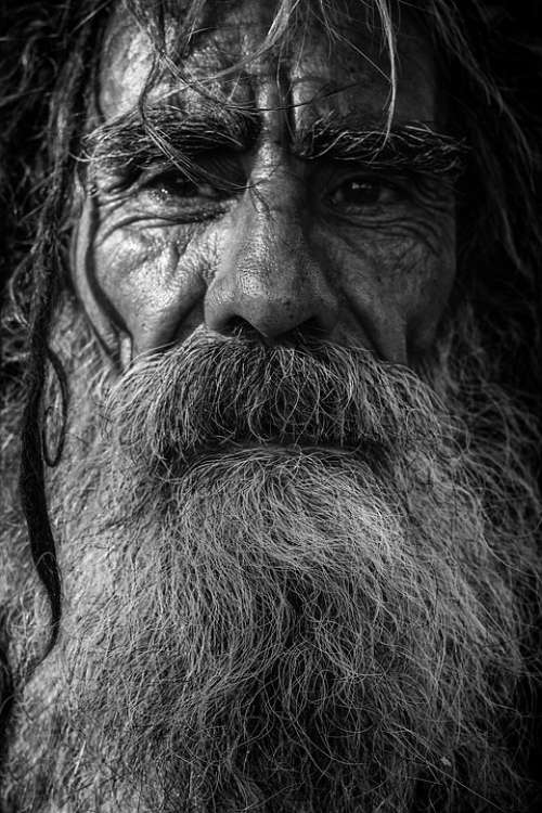 Beard Elderly Man Close-Up Dark Facial Hair Hair