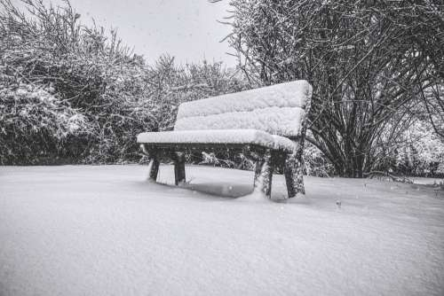 Bench Snow Winter Cold Nature Tree Lonely Park