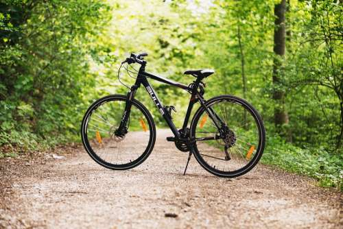 Bicycle Bike Forest Path Sports Outdoors