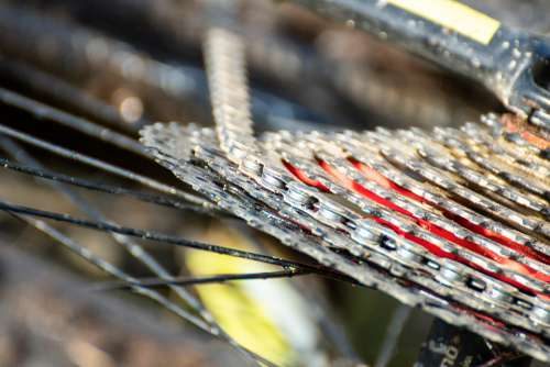 Bicycle String Wheel Cycling