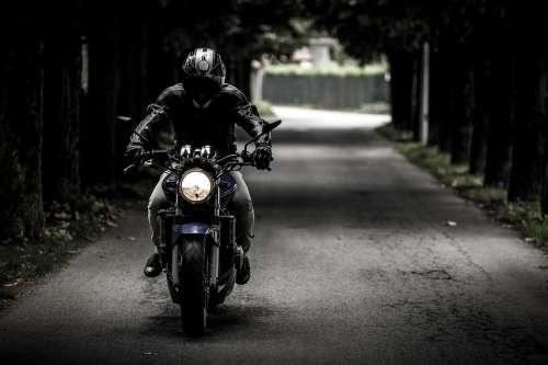 Biker Motorcycle Ride Vehicle Motorbike Road