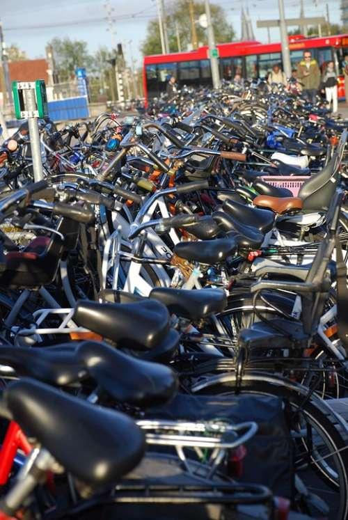 Bikes Eco Biking Urban Cycling Exercise