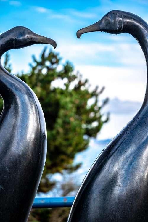 Birds Statue Sculpture Metalwork Seabirds Shore
