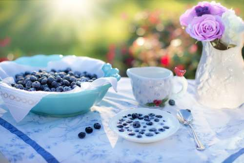 Blueberries Dessert Breakfast Food Berry Fruit