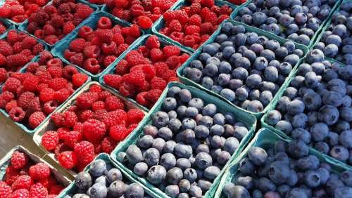 Blueberries Blueberry Fruit Berries Berry