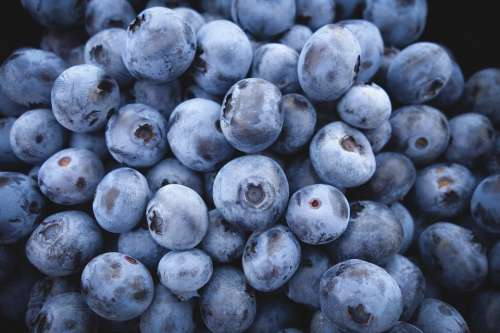 Blueberries Fruit Food Berries Blue Organic Diet