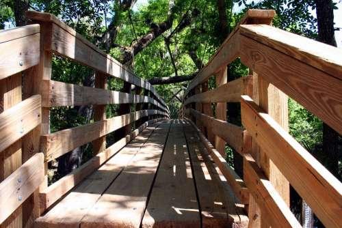 Boardwalk Wood Nature Walkway Path Recreation