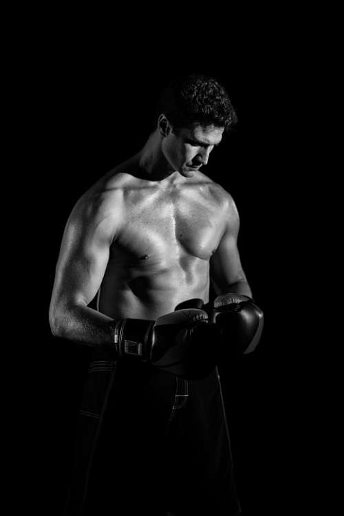 Body Boxer Boxing Fighter Strong Muscles Abs