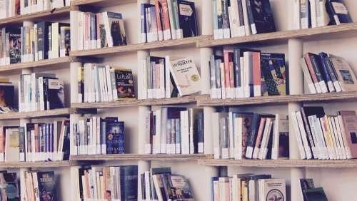 Books Library Read Shelves Shelf Reading Culture