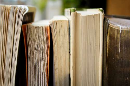 Books Education Library Pile Knowledge Wisdom