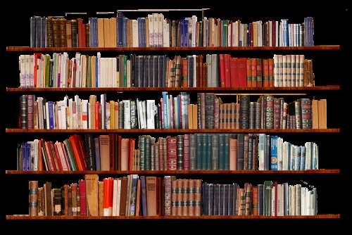 Bookshelf Isolated Transparent Background Books