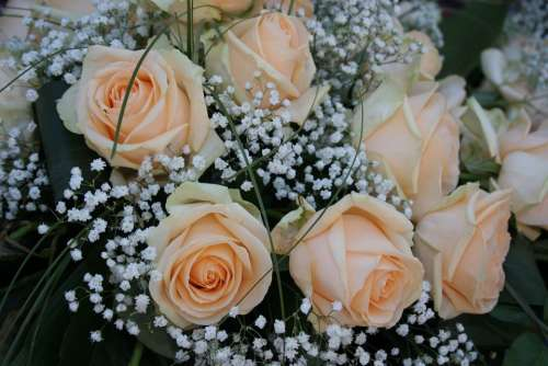 Bouquet Of Roses Roses Flowers Bouquet Wedding