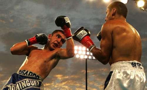 Box Boxing Match Uppercut Ricardo Dominguez