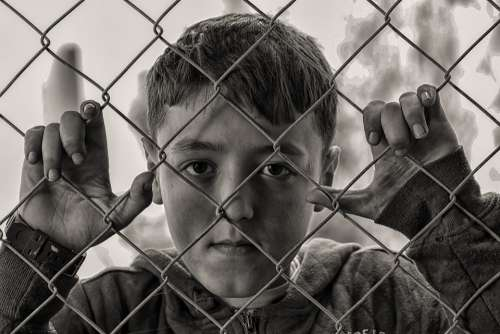 Boy Hungry Sad Fence Desperate Poor Child