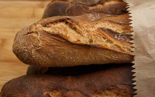 Bread Food Bakery French Baguettes Fresh Baked