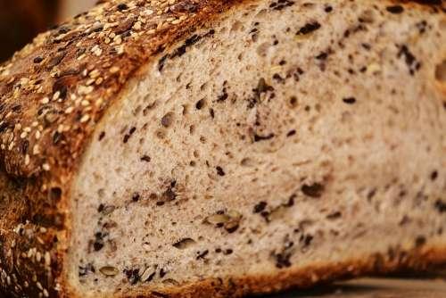 Bread Multigrain Bread Bread Crust Crispy Fresh