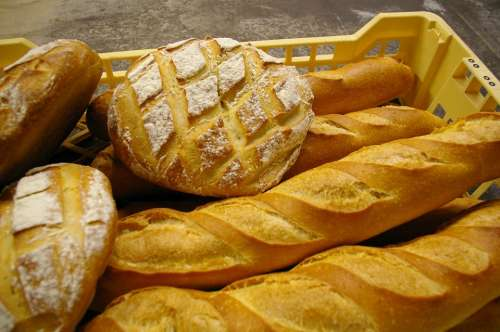 Bread Bakery Costs